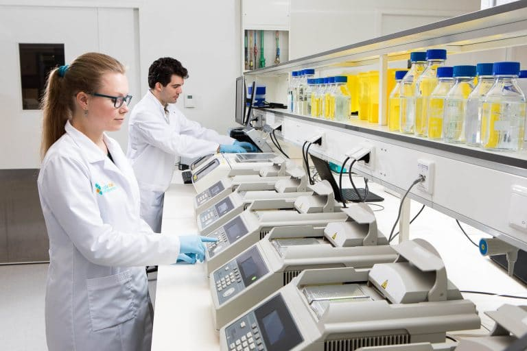 Scientists working in the lab with pcr machines